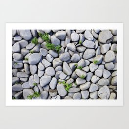 Sea Stones - Gray Rocks, Texture, Pattern Art Print