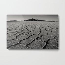 Dried Tears Metal Print