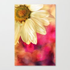 Daisy - Golden on Pink Canvas Print