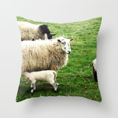 We Like Sheep Throw Pillow