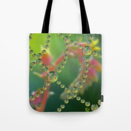 Echevaria Web Drops Tote Bag