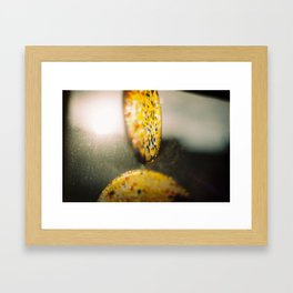 Playing with light Framed Art Print