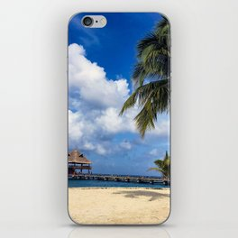 Pathway to Paradise iPhone Skin