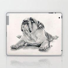 iPug Laptop & iPad Skin