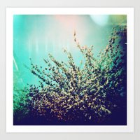 Holga Flowers I  Art Print