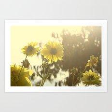 Yellow Sunshine Art Print