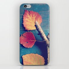 It's a Colorful World 2 iPhone & iPod Skin