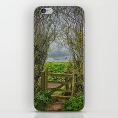 Under and Through iPhone & iPod Skin