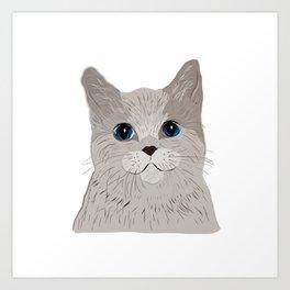 Grey cat Blue eyes Art Print