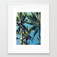 palm tree Framed Art Prints featuring Palm Tree by Jillian Stanton
