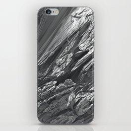 Fractal Snow iPhone Skin