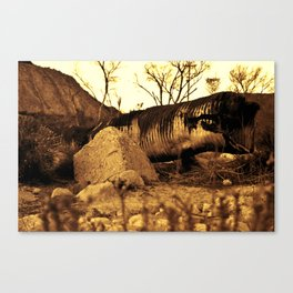 Sand Worm Carcass Canvas Print