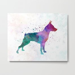 Miniature Pinscher in watercolor Metal Print