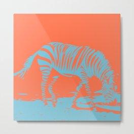 Double Zebra Metal Print