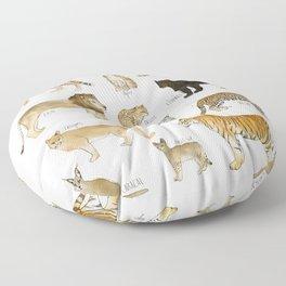 Wild Cats Floor Pillow