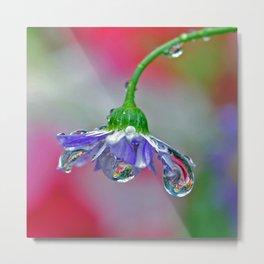 garden rain Metal Print