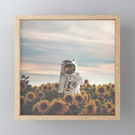The Sunflower Galaxy, Messier 63 Framed Mini Art Print