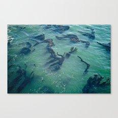 Life At Sea Canvas Print