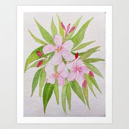 Watercolor Nerium Oleander Crown Art Print