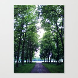 Peaceful green Canvas Print