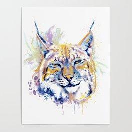 Bobcat Head Poster