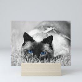 Behind Blue Eyes III Mini Art Print