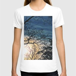 Leafless Tree In The Sunset II T-shirt
