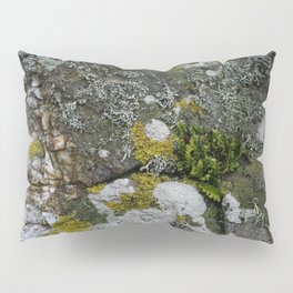 Coastal Rocks With Lichens and Ferns Pillow Sham