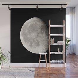 Waning Moon Wall Mural