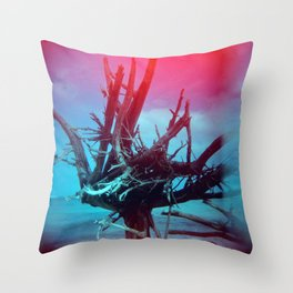 Weathered Lore II Throw Pillow