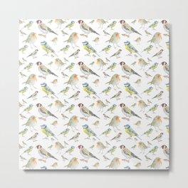 English Garden Bird Pattern Metal Print