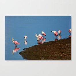 Stacking Up the Memories Canvas Print