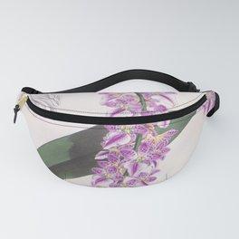 Aerides Lobbii Vintage Lindenia Orchid Fanny Pack