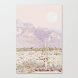 Desert Dreams Canvas Print