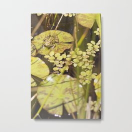 frogger... Metal Print