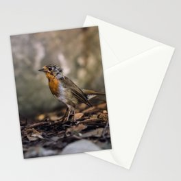 A careful look Stationery Cards