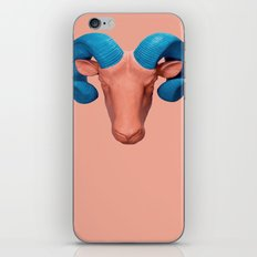 Bighorn Sheep 1 iPhone & iPod Skin