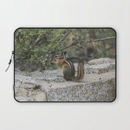 Chipmunk Feeding Laptop Sleeve