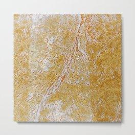 Rust Flowers 2 Metal Print