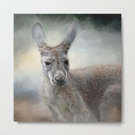 Western Grey Kangaroo - Wildlife Metal Print