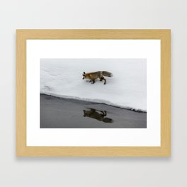 Carol M. Highsmith - Hunting Fox Framed Art Print
