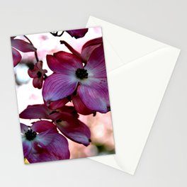 Skunk Skunkly Stationery Cards