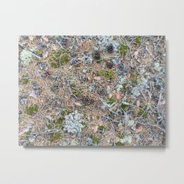 The Forest Floor Metal Print