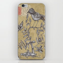 Vintage Birds and Bugs iPhone Skin