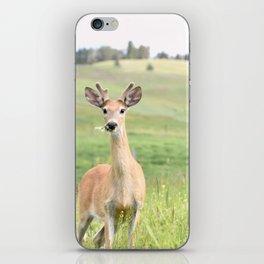 Love You Deerly iPhone Skin
