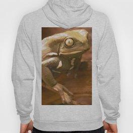 Monkey Frog Hoody
