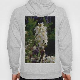 Blooming Chokecherry Stalk Hoody