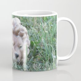 Lion Coffee Mug