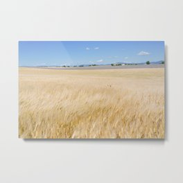Valensole Wind Metal Print