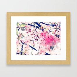 Almond blossum in Spring Framed Art Print
